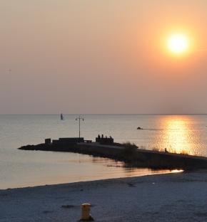 Beach Hotel de Vigilante | Najaarsactie