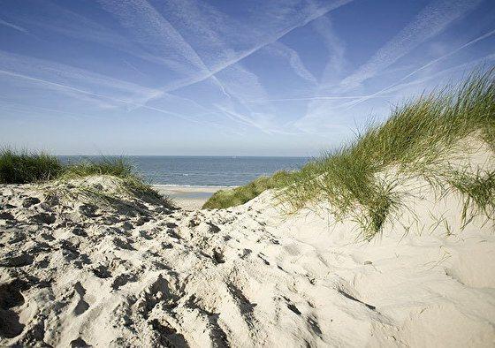 Fletcher Hotel-Restaurant Jan van Scorel | 3 dagen bos, duinen en zee!