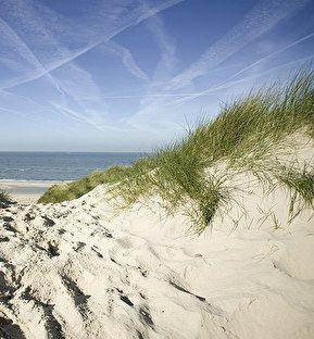 Fletcher Hotel-Restaurant Jan van Scorel | Schoorl; lekker naar zee!