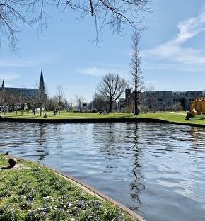 Golden Tulip Leiden Centre | Picknick arrangement in Leiden