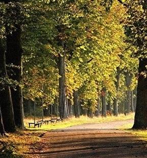 Kasteel Doenrade | Ga mee naar Zuid-Limburg 4-daags
